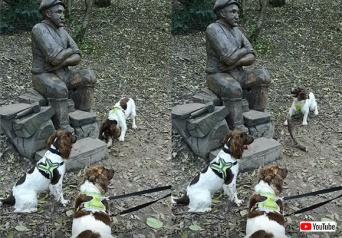 これを投げて!彫像に遊んでほしくて木の棒を何度も渡そうとする犬