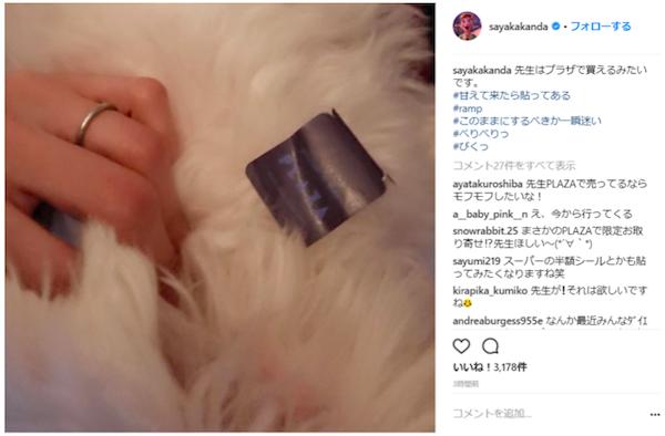 【芸能】神田沙也加、愛犬を披露するも別のところで批判の的に「犬より指輪を見せたいだけ?」