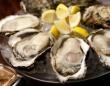 Oysterbar&Wine BELONのプレスリリース画像
