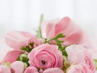 敬老の日におすすめのお花は? 気持ちが伝わる贈り物をしよう