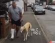 犬ってやつぁ!(涙)飼い主が骨折後、足を引きずって歩くようになった犬。飼い主の痛みに共感していた。