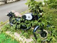バイクでも乗るか→ファッ!? 雑草が生い茂るピカピカ車体に驚愕、放置期間は意外にも...