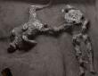 自然災害は万人を平等に飲み込んだ。ポンペイ遺跡で新たに発見された主人と奴隷の遺体(ヴェスビオ火山噴火)