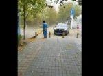 歩道の落ち葉を掃除していた清掃員のやる気が音を立てて崩れ落ちた瞬間がこちら。