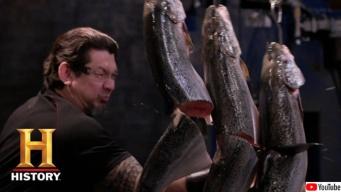 人気番組「刀剣の鉄人」で切り刻まれた肉はその後どうなるのか?スタッフがおいしくいただいているのか?