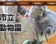 画像は「神戸市立王子動物園」のサイトより