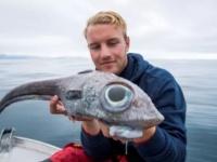 目玉の大きさがすごい!巨大な目を持つエイリアンのような深海魚が釣り上げられる(ノルウェー)