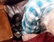 一番大好きで大切な人だから。病に伏せたおばあちゃんのそばから離れようとしない猫の愛情物語(アメリカ)
