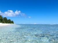 この夏、プールや海に行く予定の大学生は約◯割! 意外と行きたくない派も!?