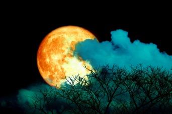 7月の満月はバックムーン。7月5日、空を見上げて新たなる目標を掲げよう