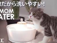 株式会社ヤベツジャパンのプレスリリース画像