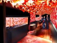 レトロかわいい! すみだ水族館で夏の風物詩、金魚の夏祭り「東京金魚ワンダーランド」開催
