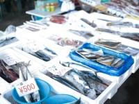 これからの季節が旬! 大学生が選ぶ、海の幸がおいしい都道府県ランキング!