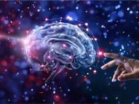 脳で会話する時代がやってくるのか?3人の脳を接続し、思考を共有させることに成功(米研究)