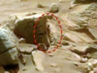 画像は、「NASA」より引用
