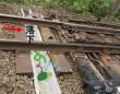 カメを逃がすためのU字溝(以下、画像はくまなく・たびにゃん(JR岡山支社)【公式】Okayama_JRのツイートより)