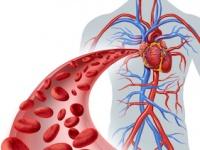 ゴースト血管の影響は認知症にもつながる(depositphotos.com)