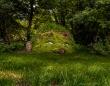 ヘリガンの失われた庭園「The Lost Gardens of Heligan」(イギリス)