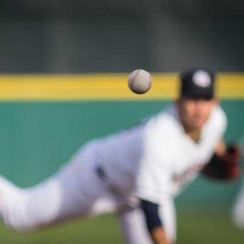 (C)Bobby Stevens Photo / Shutterstock