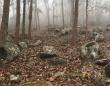 1000年以上前のミステリアスな死者の石壺が発見される(ラオス)