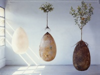 海外発! 埋葬の新しいカタチ「土に還るまゆ型棺桶」で森を作ろうプロジェクト