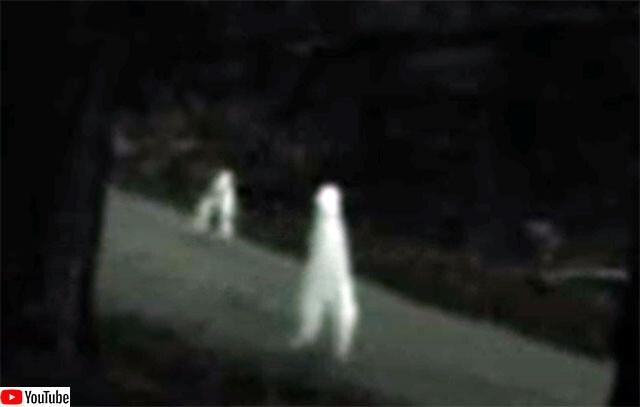 腕のない灰色のクリーチャーが2本足で歩き回る。全米各地で目撃例がある「ナイトクローラー」とは?