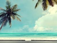 もう準備万端?! 既に夏休みの旅行を予約している大学生は2割弱!
