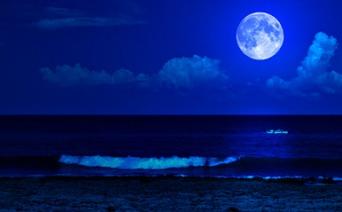 牡羊座はあなたを取り巻く世界に変化が!?1月12日 蟹座の満月【新月満月からのメッセージ】
