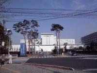 【将来の職業から選ぶ大学】看護医療・薬学編(3):関東の国公立・私立大