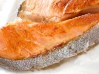 白身魚のサケに色がついているのはなぜ?植物と魚の意外な関係(*画像はイメージです)