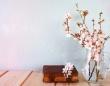 桜のネイル、ピアス…誕生日でわかる、あなたに恋を呼び込む桜グッズ【恋占ニュース】