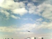 画像は、東京の超高層ビル群上空に出現したUFO