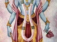 ヴィシュヌ神 画像は「Wikipedia」より引用