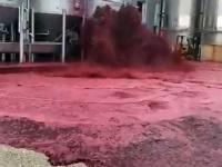 血の海みたいなことに!ワイナリーのタンクが破壊、5万リットルもの赤ワインが通りに流出(スペイン)