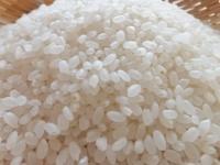 新米の季節! 大学生に聞いた、好きなお米の品種ランキング! 3位ミルキークイーン