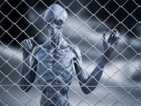 刑務所の上空でUFOを目撃したという囚人らの体に奇妙な赤い発疹が起きるというミステリー