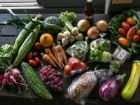 ビオ市野菜市のプレスリリース画像