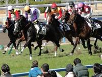 コロナ禍でも絶好調の競馬界、「ウマ娘」効果で若者ファンを新規獲得!