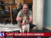 行方不明になっていた愛犬が地元ニュースで紹介される→2年半ぶりに飼い主の元に