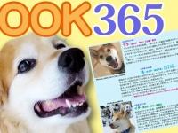 一般社団法人 保護犬のわんこのプレスリリース画像