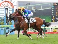 新馬戦を勝利したカイザーノヴァ