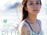 武井咲のデキ婚を生暖かく見守る芸能界とコメンテーター達
