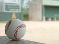野球選手からの転身(画像はイメージ)
