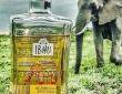 珍酒好きなあなたに。象の糞が原料、大地の芳香が味わえる蒸留酒「ジン」が販売中(南アフリカ)
