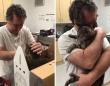 行方不明になった猫と奇跡的に再会した飼い主たちのそれぞれの物語