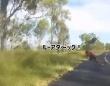 狙ってた?カンガルーがサイクリストにフライングボディアタック!ガチで体当たりする事案が発生(オーストラリア)