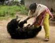 野生には戻りたくないクマ。保護歴のあるナマケグマ、人里にひょっこり顔を出し、そのままペットとして飼われることに(インド)