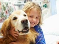 アニマルセラピーは小児喘息にも有効(shutterstock.com)
