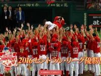 広島東洋カープ、球団公式サイトより。