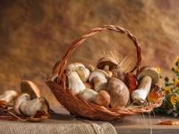 ビタミンB3な食べ物は、魚なら、たらこ、鰹節、まぐろ、野菜なら、らっかせい、バターピーナッツ、干ししいたけ、とうがらし、舞茸、エリンギ、松茸など(depositphotos.com)